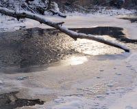 inverno: Lago e log congelados Fotografia de Stock Royalty Free