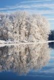 Inverno, lago jackson Hole Fotos de Stock Royalty Free