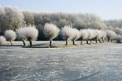 Inverno landscape3 Immagine Stock Libera da Diritti