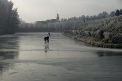 Inverno landscape4 Immagine Stock Libera da Diritti