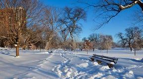 Inverno in Lincoln Park immagini stock libere da diritti