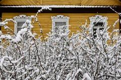 Inverno in Lituania Immagini Stock Libere da Diritti