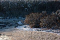 Inverno in Lituania Fotografia Stock Libera da Diritti
