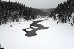 inverno Madison River Yellowstone Imagem de Stock Royalty Free