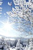 Inverno maravilhoso Foto de Stock Royalty Free