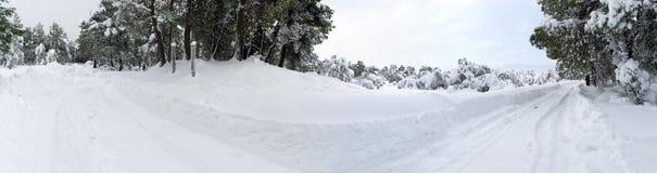 inverno maravilhoso da vista panorâmica com lotes da neve e das trações da neve em uma vila grega na ilha de Evia, Grécia foto de stock royalty free