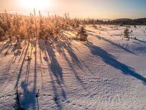 Inverno in montagne di Jizera a tempo di tramonto con le ombre lunghe degli alberi, repubblica Ceca fotografia stock libera da diritti