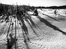 Inverno in montagne di Jizera a tempo di tramonto con le ombre lunghe degli alberi, repubblica Ceca immagine stock