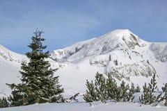 Inverno in montagne di Rofan Immagini Stock