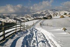 Inverno in montagne rumene Fotografia Stock Libera da Diritti