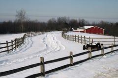 Inverno na exploração agrícola Fotografia de Stock