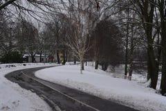 inverno na Suécia Fotografia de Stock