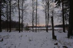 inverno na Suécia Imagem de Stock