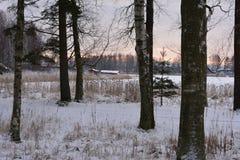 inverno na Suécia Imagens de Stock Royalty Free