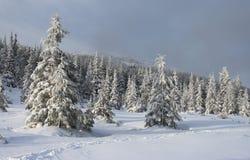 Inverno nas montanhas Foto de Stock Royalty Free