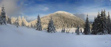 Inverno nas montanhas Fotos de Stock Royalty Free