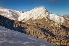 Inverno nas montanhas Fotos de Stock
