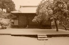 Inverno nel Giappone Immagine Stock