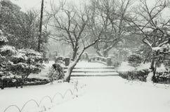 Inverno nel Giappone Fotografia Stock Libera da Diritti