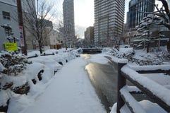 Inverno nel Giappone Fotografie Stock