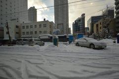 Inverno nel Giappone Immagini Stock