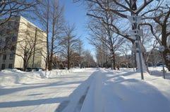 Inverno nel Giappone Fotografie Stock Libere da Diritti
