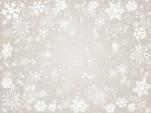 Inverno nel grey Fotografia Stock