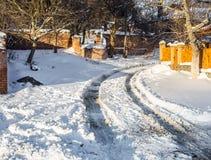 Inverno nel legno Fotografia Stock Libera da Diritti