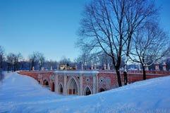 Inverno nel palazzo in Tsaritsyno, Mosca Fotografia Stock