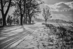 Inverno nel parco Immagini Stock
