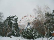 Inverno nel parco della città della città Immagine Stock