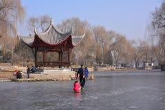 Inverno nel parco di Pechino Fotografia Stock