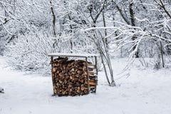 Inverno nel villaggio Fotografia Stock Libera da Diritti