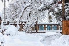 Inverno nel villaggio Immagine Stock