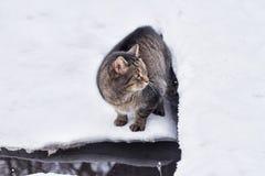 Inverno nel villaggio Fotografie Stock