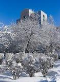 Inverno nella città Immagine Stock Libera da Diritti