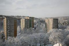Inverno nella città Immagini Stock