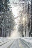 Inverno nella foresta con la polvere della neve sulle strade in Russia, Sibe Fotografia Stock
