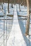 Inverno nella sosta Fotografie Stock