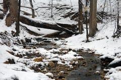 Inverno nella sosta del Rock Creek Fotografia Stock Libera da Diritti