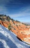 Inverno nella sosta nazionale del canyon di Bryce fotografia stock libera da diritti