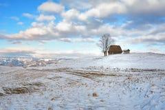 Inverno nella Transilvania Romania Immagine Stock Libera da Diritti