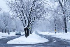 Inverno nella via Fotografia Stock