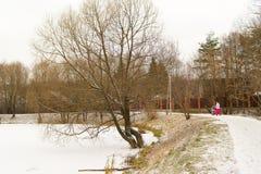 Inverno nella via Lo stagno congelato Supporto degli alberi senza foglie immagini stock