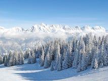 Inverno nelle alpi Fotografie Stock Libere da Diritti