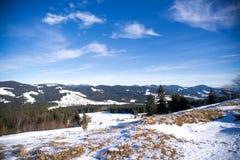 Inverno nelle alpi svizzere, Svizzera Immagine Stock