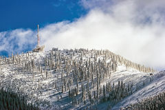 Inverno nelle montagne Immagine Stock