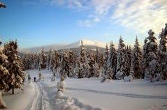 Inverno nelle montagne carpatiche Fotografia Stock Libera da Diritti