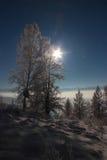 Inverno nelle montagne di Altai Fotografie Stock