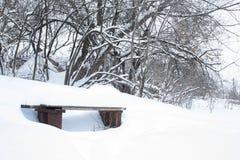 inverno, neve, paisagem, árvore, frio, floresta, árvores, natureza, branco, parque, estação, gelo, geada, céu, nevado, azul, estr imagens de stock royalty free